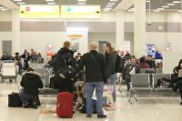 Невозвратные авиабилеты могут разрешить сдавать в случае болезни родственника