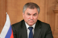 Володин предложил развивать в Волгоградской области НКО по общественно полезным услугам