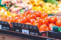Россия готова рассмотреть расширение списка поставщиков томатов из Турции