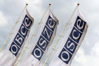 Генсек ОБСЕ назвал нарушения Киевом прав россиян на выборах «серой зоной» международного права