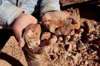Как сделать всю золотодобычу в России легальной