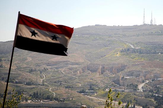 Делегация Госдумы прибыла с визитом в Сирию