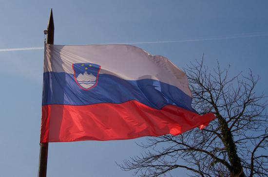 Президент Словении распустил парламент