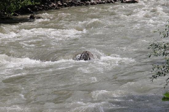 Сотрудники МЧС Кубани за один день спасли двоих тонущих мужчин из горных рек