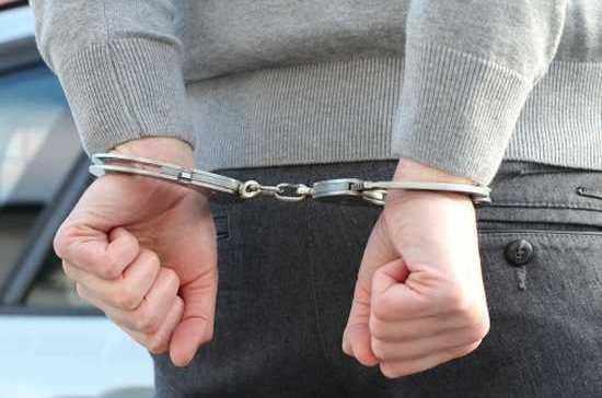В Саратовской области задержали мужчину, обстрелявшего дом соседей из-за собаки