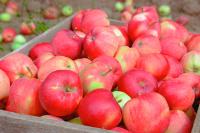 Органические продукты будут на треть дороже обычных