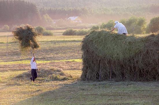 Руководство выделило нальготные сельхозкредиты 5,2 млрд руб.