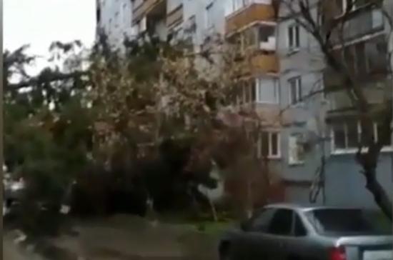 В больнице умерла пенсионерка, пострадавшая при урагане в Москве