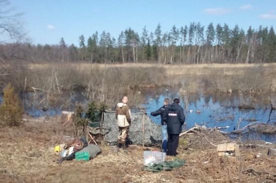 Житель Ярославской области убил друга, стреляя по взлетающей стае гусей