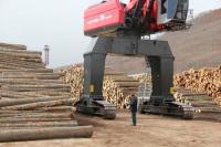 Вывоз лесоматериалов через Дальневосточную таможню увеличился на 8%