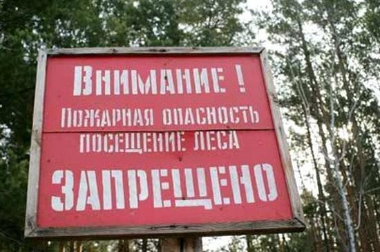 В Крыму запретили посещение лесов на 21 день из-за чрезвычайной ситуации