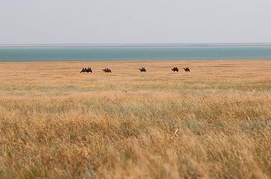 На востоке Ростовской области могут возродить бальнеологический курорт