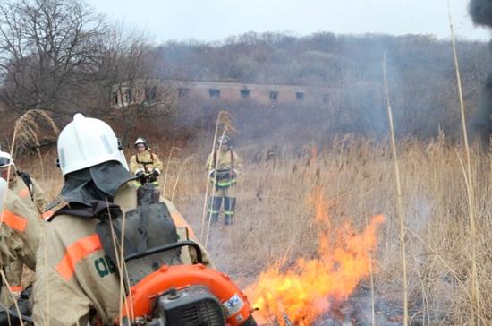Пожары уничтожают заповедники на Дальнем Востоке, сообщают СМИ
