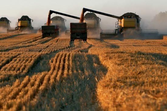 Ставку сельхозналога  установят регионы
