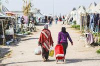 Курц хочет сократить социальную помощь для беженцев