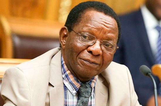 Спикер парламента Гвинейской Республики предложил открыть в Москве Дом Африки