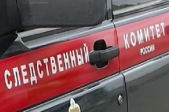 СК Москвы возбудил дело по убийству матери и сына, тела которых обнаружили в квартире