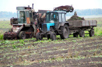 Государство направило 11 миллиардов на мелиорацию сельхозземель в 2018 году