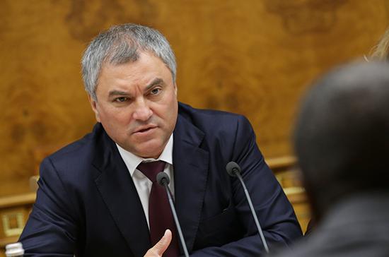 Володин предложил депутатам Бундестага посетить Сирию