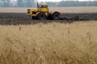 Минсельхоз предложил изменить сроки вывоза зерна из регионов