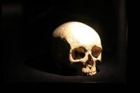 Петербургские археологи нашли древний череп с трепанацией