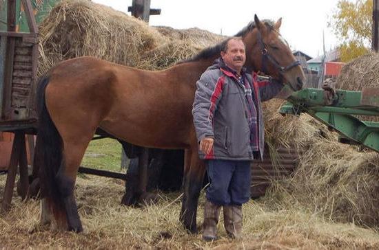 Камчатский депутат приехал на заседание Заксобрания на коне, протестуя против цен на бензин