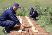 В Воронежской области за 2 часа изъяли и уничтожили 78 боеприпасов времён ВОВ