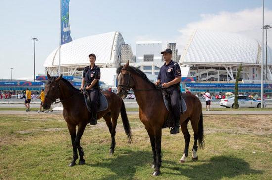 В Сочи во время чемпионата мира работают подразделения конной полиции и кинологической службы