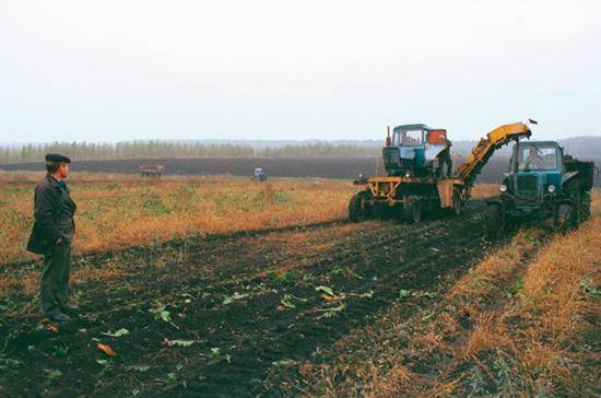 Невостребованные земельные доли предприятий станут землями сельхозназначения