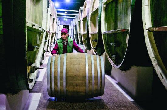 Чем больше будет в России виноделов, тем меньше… алкоголиков