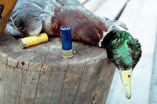 Охотники и спортсмены будут самостоятельно снаряжать патроны к оружию
