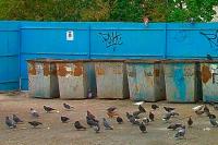 Тарифы на вывоз мусора согласовали только 12 регионов