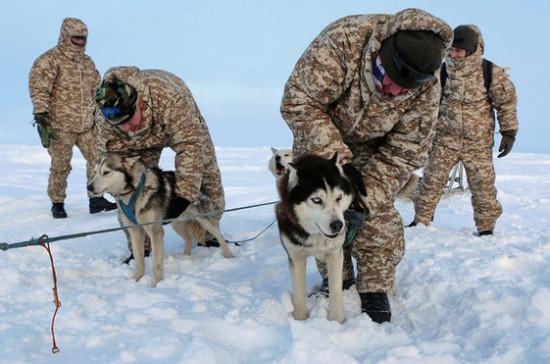 Арктические регионы России будут сотрудничать со скандинавскими странами