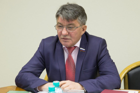 Парламентарии укрепят российско-японскую дружбу