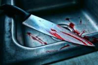Стало известно, сколько будет идти следствие по делу трёх сестёр, убивших отца