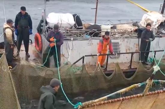 На Камчатке увеличили квоту на добычу лосося