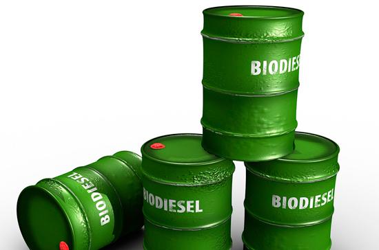 10 августа отмечается Международный день  биодизеля