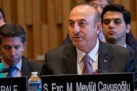 Глава МИД Турции: Москва и Анкара найдут пути урегулирования ситуации в Идлибе
