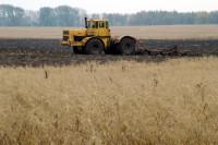 Кабмин изучит введение верхнего порога дохода сельхозпредприятий для получения господдержки