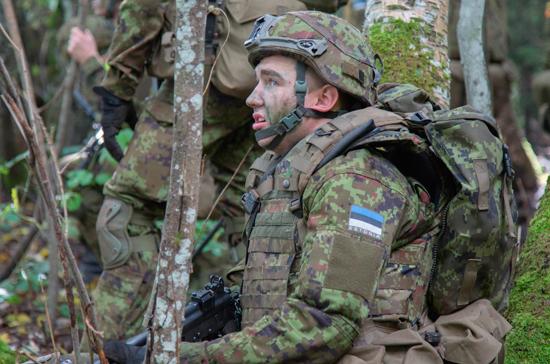Молодёжь Консервативной партии Эстонии предложила устроить в армии этническую чистку