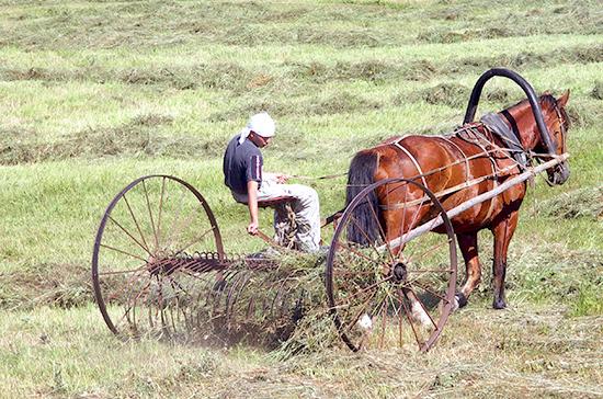 Государство поможет погасить сельхозкредиты