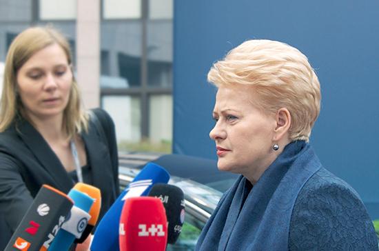 Грибаускайте выступила против парламентского расследования, которое коснётся её деятельности