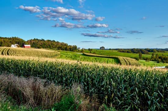Жить и работать фермеры смогут на одной земле