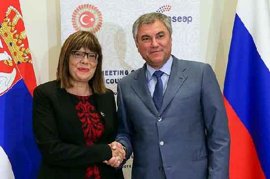 Спикер парламента Сербии: Белград будет настаивать на недопустимости санкций против российских депутатов
