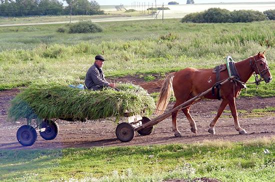 В Госдуме настаивают на увеличении финансирования сельского хозяйства