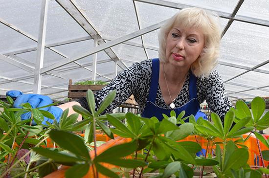 Закон о садоводстве запутался в ведомственных спорах