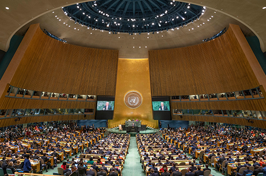 Инициативу российской молодёжи обсудят в ООН
