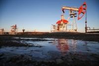 Нефтедобычу возьмут под парламентский контроль