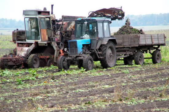 Кашин: финансирование сельского хозяйства в 2019 году увеличится на 34 процента