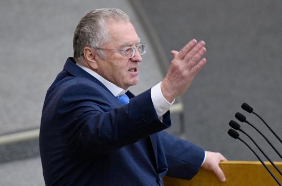 Жириновский предложил оценить результаты нахождения России в ВТО